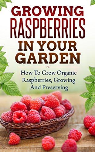 Growing Raspberries In Your Garden - How To Grow Organic Raspberries, Growing and Preserving: Canning, Preserving Berries, Backyard Berries, Square Foot ... Raspberry Jam, Own Berries, Raspberry) by Martha McDowell