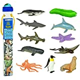 Safari Ltd Ocean TOOB - Comes With 12 Different Hand Painted Animal Toy Figurine Models - Including Sea Lion, Eagle Ray, Starfish, Turtle, Penguin, Octopus, Humpback Whale, Sperm Whale, Moray Eel, Hammerhead Shark, Tiger Shark, and Dolphin - For Ages 5 and Up