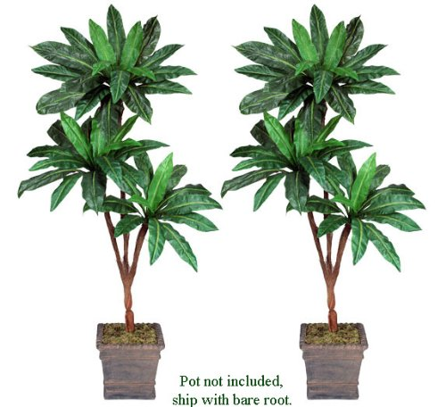 Two 6' Bird Nest Tripled Artificial Palm Trees Silk Plants