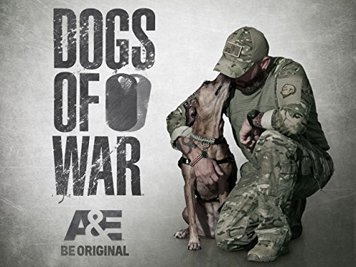 Dogs of War Season 1