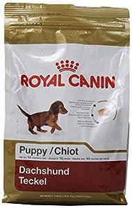 Royal Canin Dachshund Puppy Dry Dog Food, 2.5-Pound