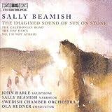 Imagined Sound of Sun on Stone (Swedish Co/Rudner)