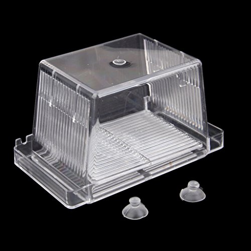 Aquarium fish tank double breeding incubator breeder for Fish breeder box