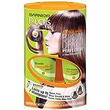 Garnier Fructis Sleek & Shine Blow Dry Perfector, 1 Kit ~ Garnier
