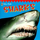 img - for Sharks (Look-Look) book / textbook / text book