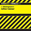 Julius Caesar: CliffsNotes Audiobook by Martha Perry Narrated by Luke Daniels