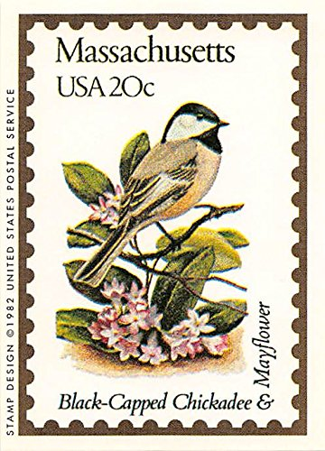 Massachusetts State Bird & Flower trading card