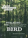 Stalking the Ghost Bird: The Elusive Ivory-Billed Woodpecker in Louisiana