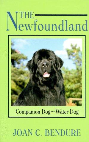 The Newfoundland: Companion Dog-Water Dog