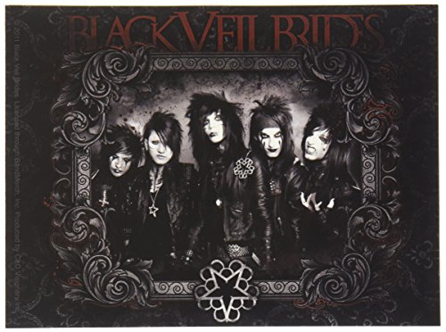 CandD Visionary Black Veil Bride Raven Sticker