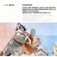 Lasst uns sorgen, lasst uns wachen, BWV 213: Recitative: Auf! folge meiner Bahn (Soprano, Tenor)