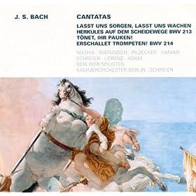 Lasst uns sorgen, lasst uns wachen, BWV 213: Aria: Auf meinen Flugeln sollst du schweben (Tenor)