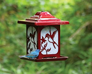 Homestead Hummingbird Frosted Glass Bird Feeder (Jolly Pop Red) - 4622