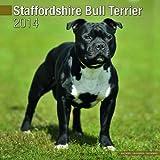 Avonside Publishing Staffordshire Bull Terrier 2014 (Calendar 2014)