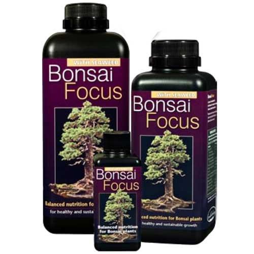 bonsai-focus-100-ml-york-bonsai-engrais-liquide