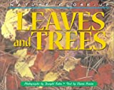 Leaves and trees /