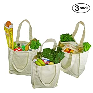 Deluxe Organic Cotton Grocery Bag with Bottle Sleeves - Natural (3 Pack)