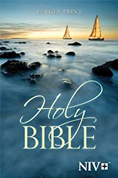 NIV Larger Print Bible