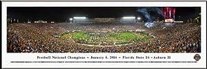 Florida State Seminoles - 2013 Football National Champions - Framed Poster Print by Laminated Visuals