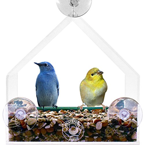 Grateful Gnome - Giant Window Bird Feeder - Clear Acrylic House For Small Or Large Wild Bird Like Finch And Cardinal - Best Cheap Modern Unique And Unusual Window Bird Feeder Out There - Cool (Virtually Squirrel Proof) Platform Tray Station For Backyard W