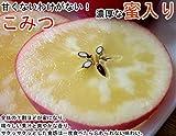 南国フルーツ 究極の蜜入リンゴ青森産こみつ8~12玉