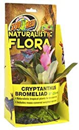 Zoo Med Naturalistic Flora Cryptanthus Bromeliad 8-Inch