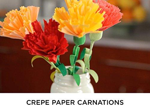 crepe-paper-carnations
