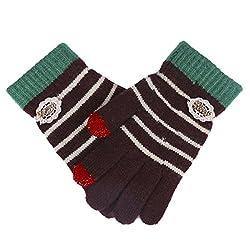 Damara Women's Durable Touch Screen Stripe Knit Wool Gloves,Coffee