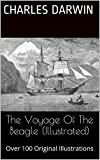 The Voyage Of The Beagle (Illustrated): Over 100 Illustrations