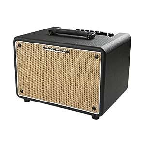 Amazon.com: Ibanez Troubadour T150S 150W Stereo Acoustic