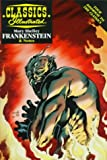 Frankenstein (Classics Illustrated Study Guides Series)