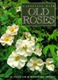 Amazon / Cassell Illustrated: Gardening with Old Roses (Alan Sinclair) (Rose Thodey)