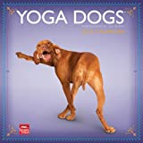 Yoga Dogs 2013 Square 12x12 Wall (Multilingual Edition)