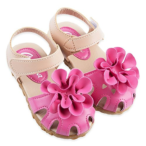 NITYP @ Baby Girls Toddlers Kids Flower Shoes (Rose, 6.5) (Superhero Football Gloves Kids compare prices)