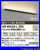 �R�C�Y�~ AB40529L