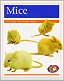 img - for Mice PM Non Fiction Animal Facts Level 16 Pets Orange book / textbook / text book