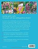Image de Welche Pflanze passt auf meinen Balkon?: Die besten Arten & Sorten für jeden Standort