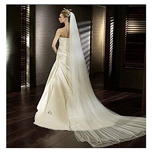 Soft Tulle Wedding Veil for Bride Lady 2 Layers 3 Meters Long Cathedral Chapel Floor Veils Embroidered Lace Trim Hair Side Comb (Ivory)