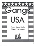 img - for Gangs USA book / textbook / text book