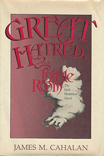 Great Hatred, Little Room: The Irish Historical Novel (Irish Studies)