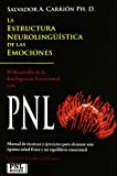 Estructura neurolinguistica