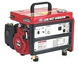 All Power America APG3301C 1,200 Watt 4-Stroke Gas Powered Portable Generator (CARB Compliant)