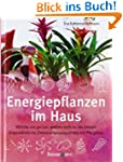 Energiepflanzen im Haus: Welche uns g...