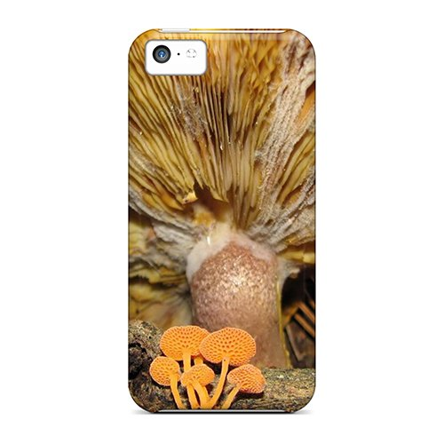 Ultra Slim Fit Hard Alleternity Store Case Cover Specially Made For Iphone 5C- Yellow Mushrooms