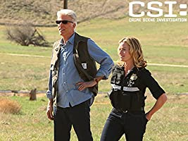 CSI: Crime Scene Investigation, Season 15
