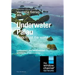 Underwater Palau