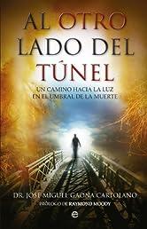 Al otro lado del túnel (Psicologia Y Salud (esfera)) (Spanish Edition)