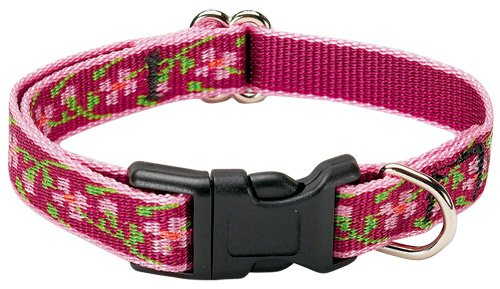 Lupine Adjustable Collars Small 1/2