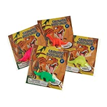 Lot Of 12 Assorted Water Growing Dinosaurs