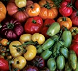 Rainbow Heirloom Mix Tomato - 50 Seeds